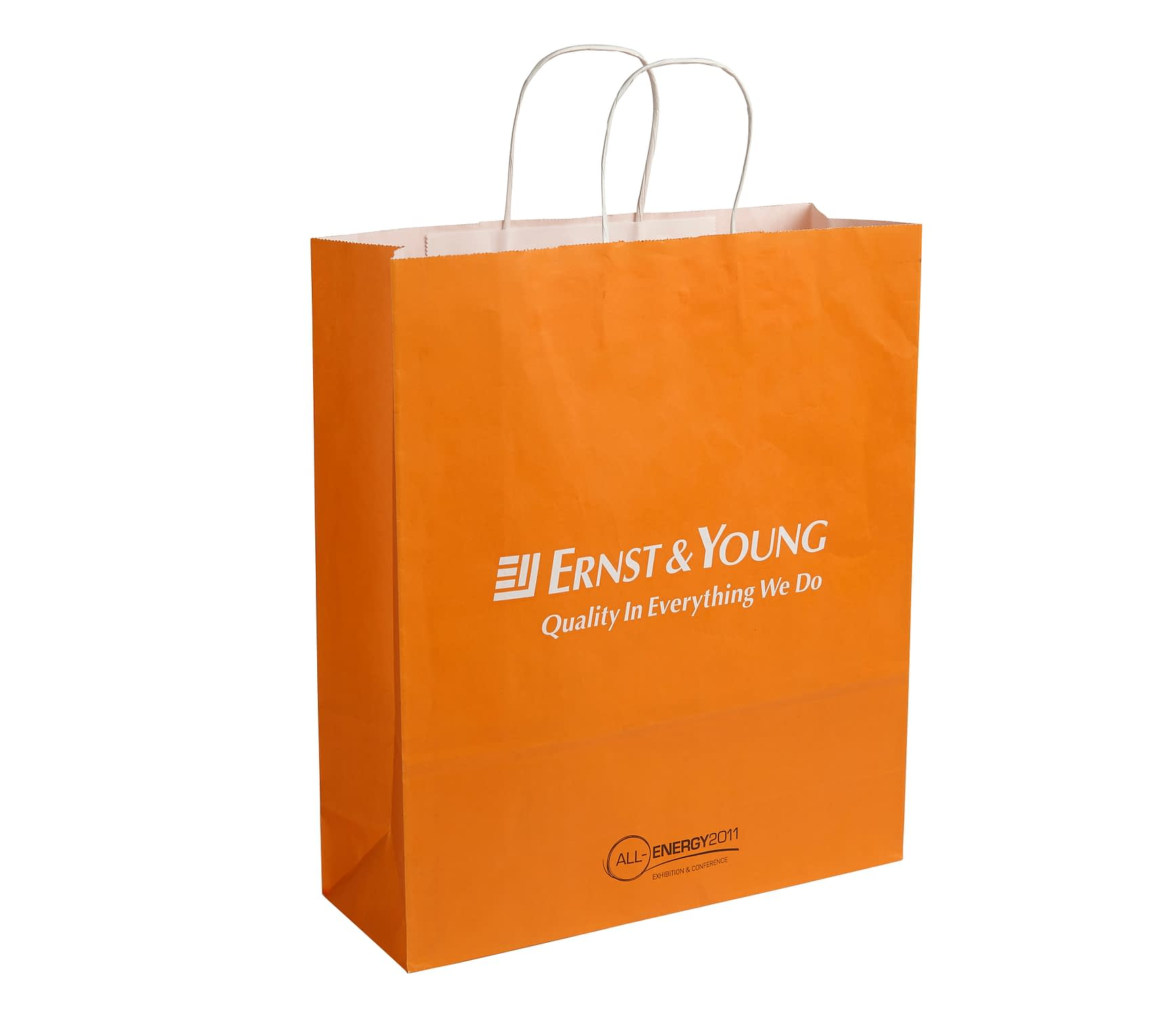 Ernst & Young Twisted Handle Kraft Paper Bag