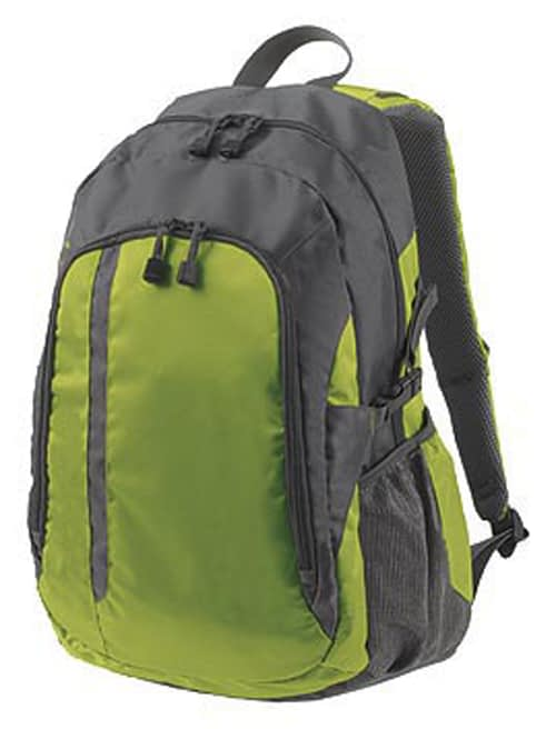 Galaxy Backpack in Grey and Green